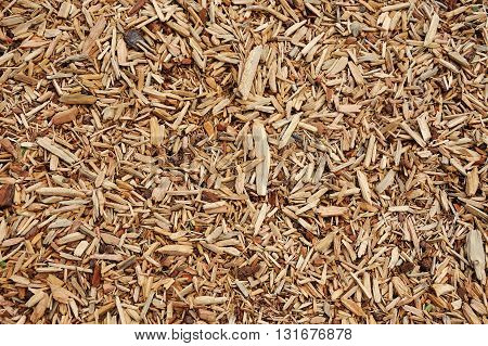 close up on mulch background, close up on detail