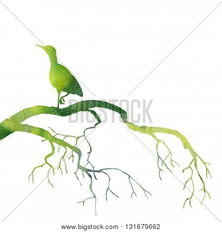 silhouette of bird at tree drawing in watercolor, hand drawn heron at tree branch, green silhouette