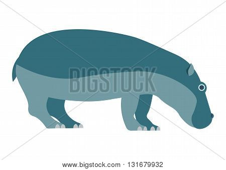 Hippo vector illustration. Hippo isolated on white background