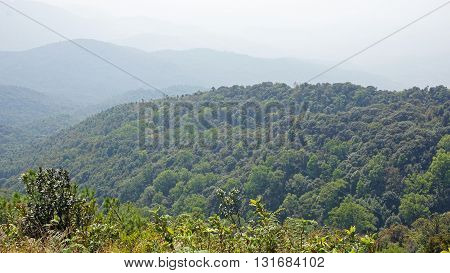 amazing green landscape in doi inthanon national park