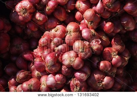 many shallots group background in market Thailand