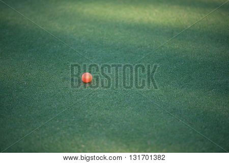orange golf ball on course green grass