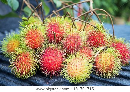 Fresh red rambutan sweet delicious fruit. Plum-sized tropical fruit with soft spines and a slightly acidic taste cultivated in many countries in the region.