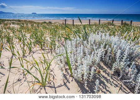 Sandy Dunes On Beach Laganas Bay Zakynthos Greece
