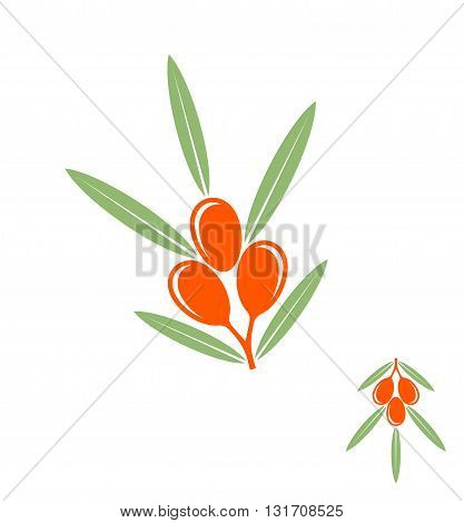 Abstract sea buckthorn berries on white background