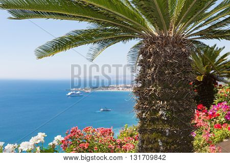 Palm tree and geranium flowers with aerial view at Mediterranean Sea near Taormina at Sicily