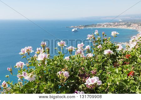 Geranium flowers with aerial view at Mediterranean Sea near Taormina at Sicily