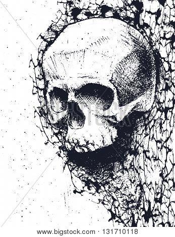 Black and white human skull. Hand drawn. Jpeg version.