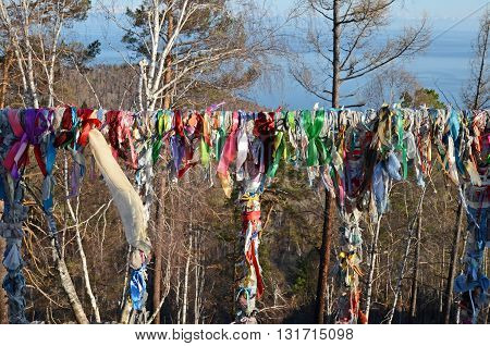 Shamanic tree with narrow strips of colored matter, Listvyanka, Lake Baikal in spring