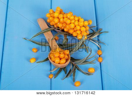 Bunch of sea buckthorn berries and a spoon on a wood background painted in blue.
