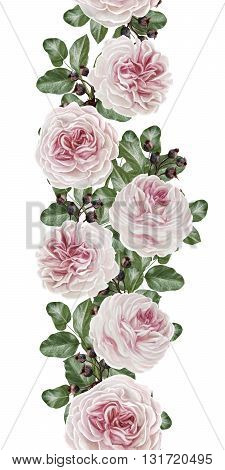 Vertical floral border. Pattern seamless. Old style.Flower garland of pink camellias on a silver background.