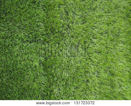 artificial green grass texture background green game