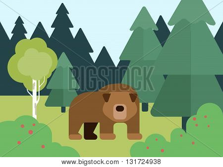 Flat design cartoon vector wild animals bear in the forest