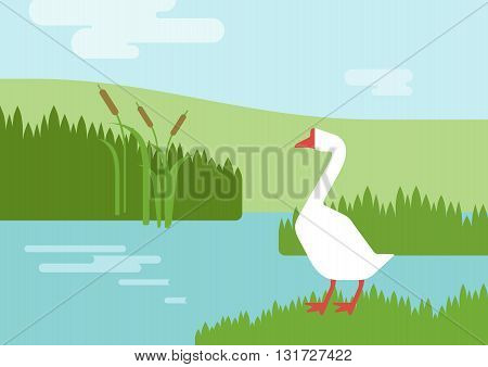 Goose riverhabitat flat design cartoon vector farm animals birds