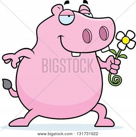 Hippo Flower