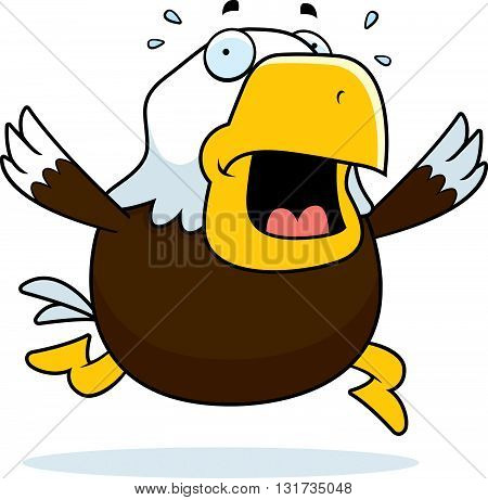 Cartoon Bald Eagle Panic