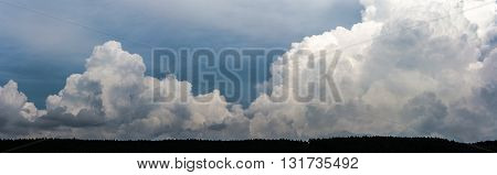 Panoramatic clouds and sky over the long forest