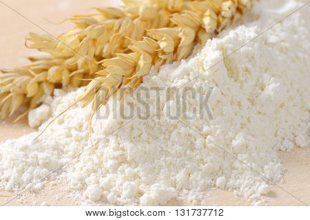 close up of wheat flour and wheat ears