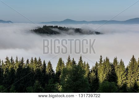 View from mountains to the valley covered with foggy.