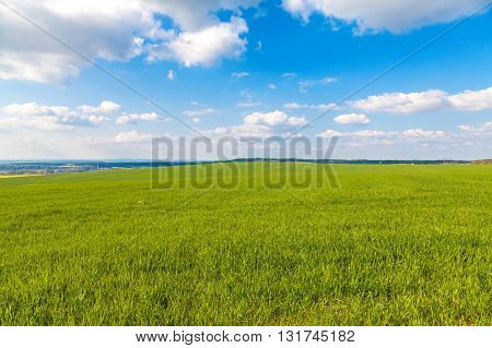 Beatiful green field with cloudy sky, spring season