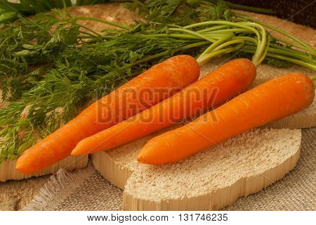 Organic carrots on a natural wooden background, farm food, GMO free.