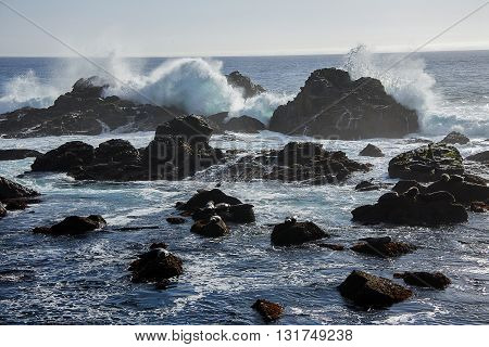 Scenic ocean landscape with seals hiding from powerful waves behind rocks.