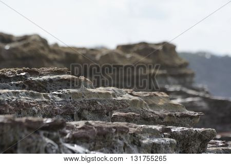 Beach rocks eroded by the sea in New Zealand