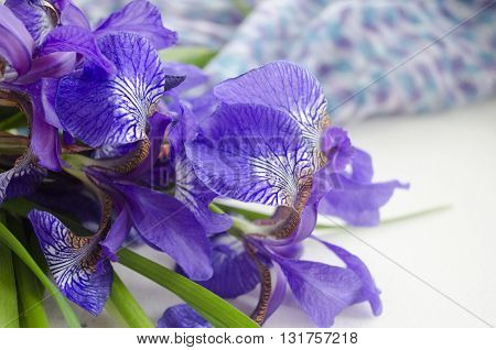 Iris flower. Bouquet of iris. Petals of a flower of an iris. Purple iris close-up.
