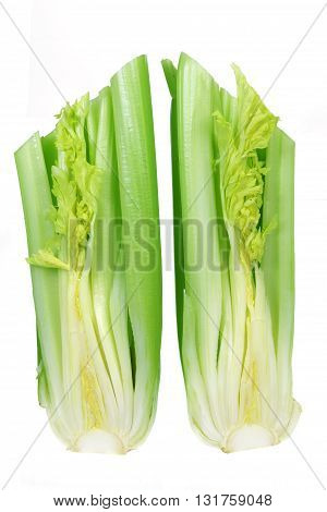 Bunches of Celery Stalks on White Background
