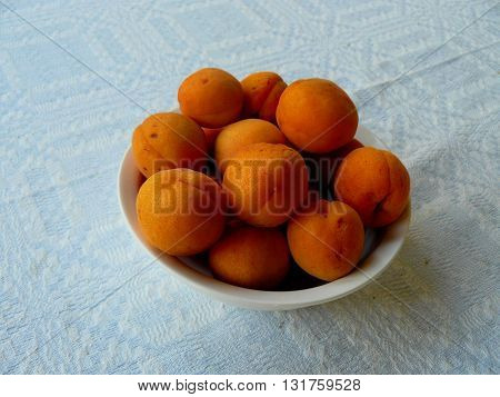 White Bowl of Apricots on Light Tablecloth