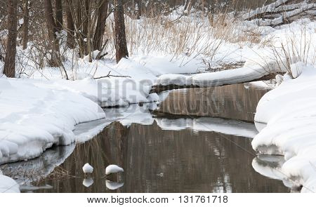 Slow flowing water of Lesna River in winter, Bialowieza Forest, Poland, Europe