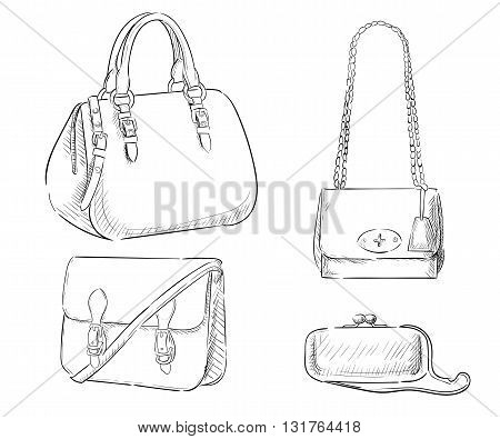 Sketches of bags. Vector fashion illustration. Women's Bags Hand Drawn Purses set of women's fashion accessories. vector illustration handbags