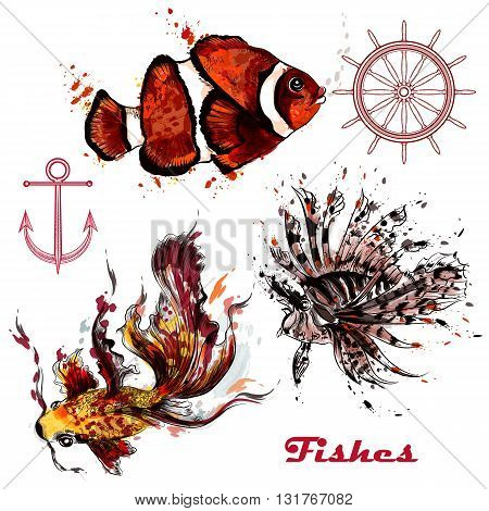 A collection of vector watercolor fishes painted by ink spots