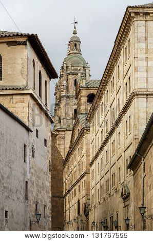 Details of the Cathedral and monuments of Salamanca Spain