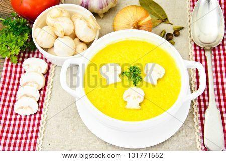 Puree Cream Soup of Zucchini with Mushrooms Studio Photo