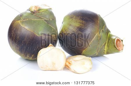 Toddy PalmPalmyra palm isolated on white background.