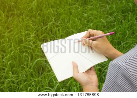 Pencils and notebook in hand with cornfield background
