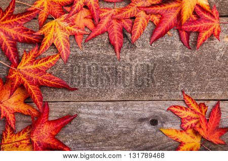 Styled stock autumnal photograph autumn leaves on a wooden background copy space for your business message promotion headline