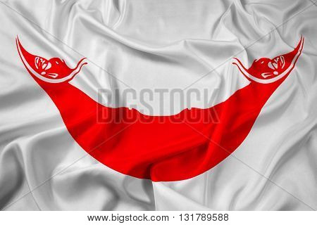 Waving Flag of Easter Island, with beautiful satin background