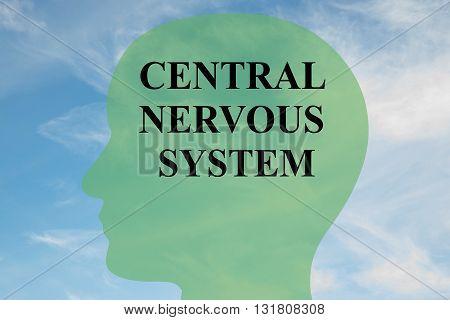 Central Nervous System Brain Concept