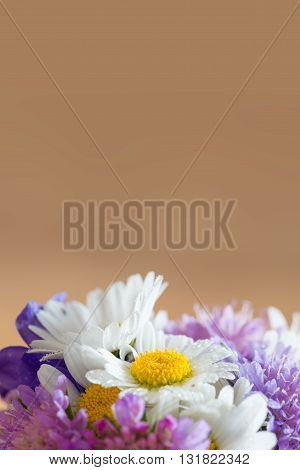 brown background with blossoms of garden flowers at bottom