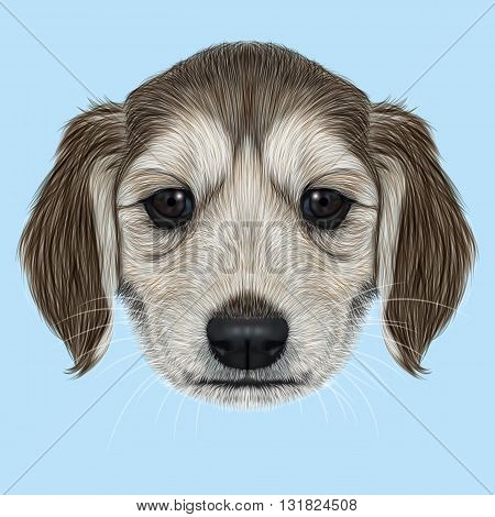 Illustrated Portrait of Afghan Hound puppy. Cute dark coat face of domestic dog on blue background.