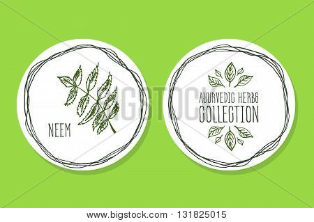 Ayurvedic Herb Collection. Handdrawn Illustration - Health and Nature Set. Natural Supplements. Ayurvedic Herb Label with Neem