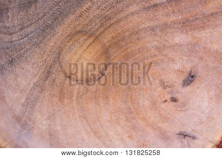 Wood Curve Pattern Texture Background