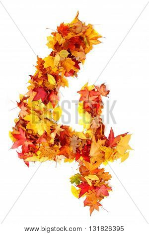 Alphabet Sign From Autumn Leaf