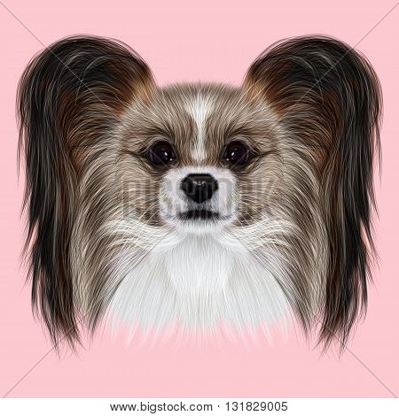 Illustrated Portrait of Papillon dog. Cute fluffy face of Continental Toy Spaniel dog on pink background.