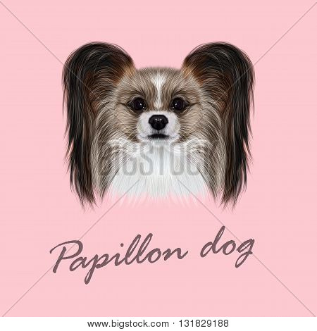 Vector Illustrated Portrait of Papillon dog. Cute fluffy face of Continental Toy Spaniel dog on pink background.