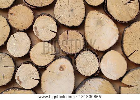 Beautiful Natural Wooden Backdrop