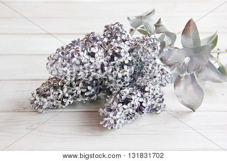 silver, flowers, leaves, branch, lilac, white, table, unique, unusual, solution, plants