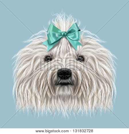 Illustrated Portrait of Puli dog. Cute curly white face of domestic dog on blue background.